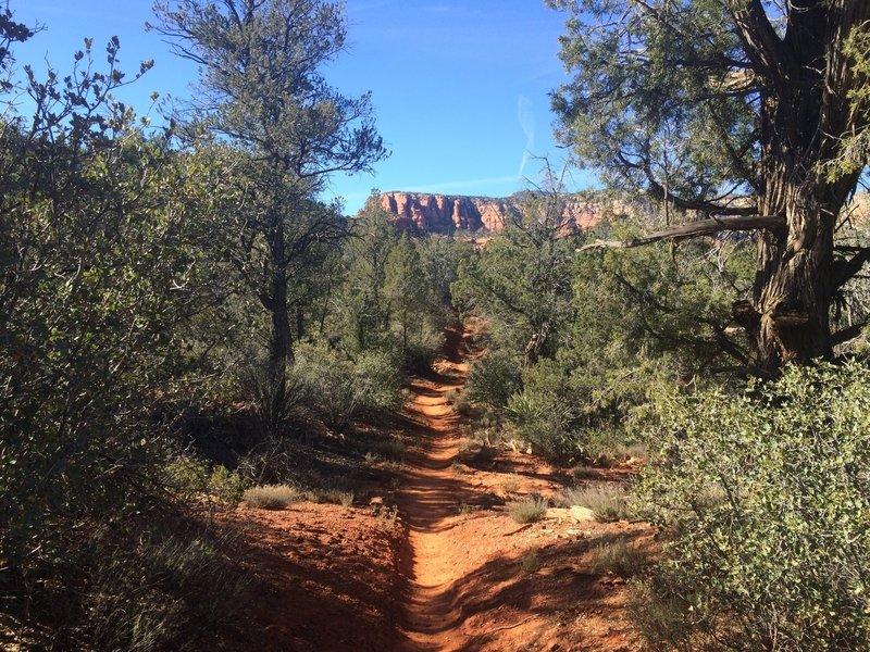Cockscomb Trail close to Dawa Trail