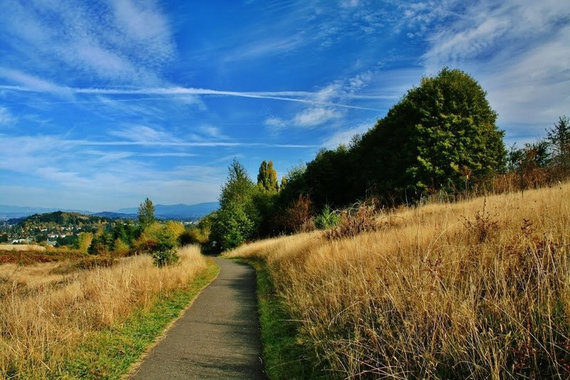 Summit Lane.