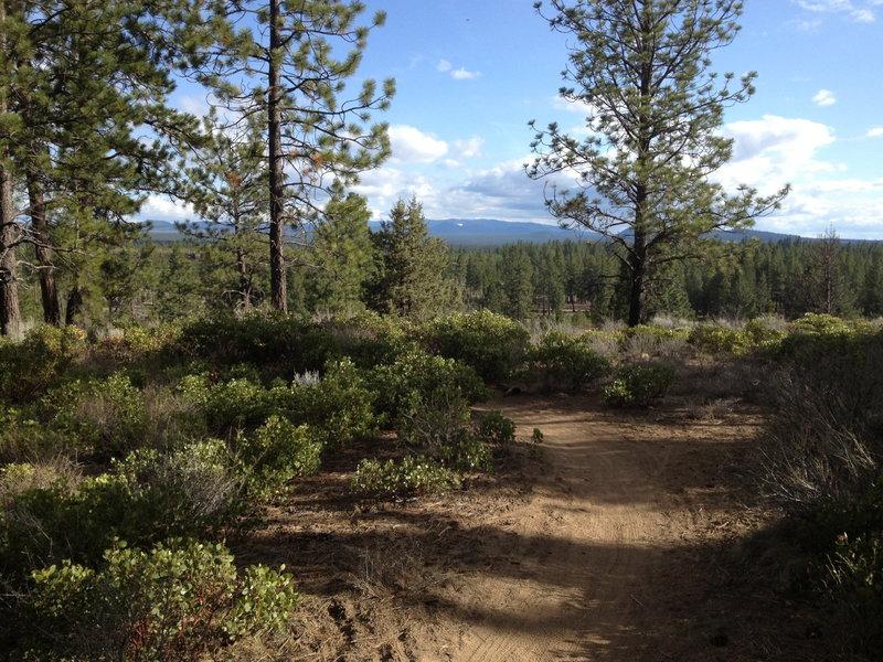 Beautiful Bend trails