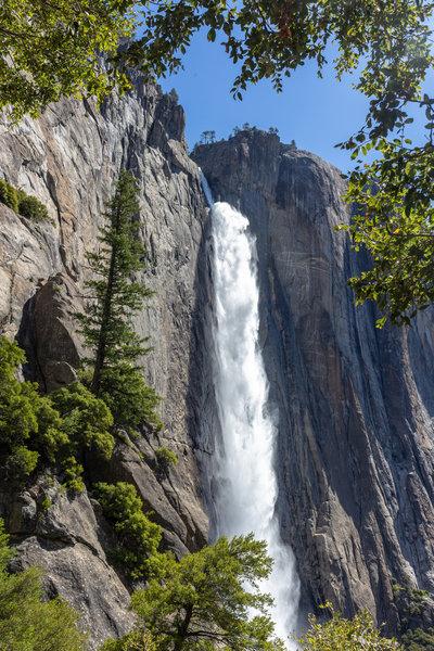 Upper Yosemite Falls through the trees on Yosemite Falls Trail.
