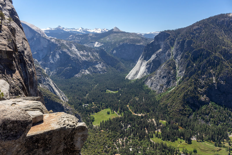 Eastern Yosemite Valley in front of a snowy mountain range backdrop.