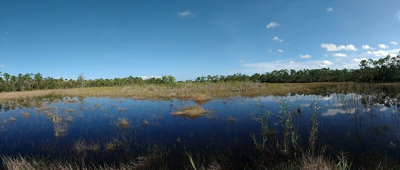 Panoramic view from the SWA Greenway Butterfly Loop trail.