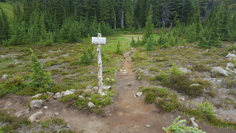 Russell Spur or PCT