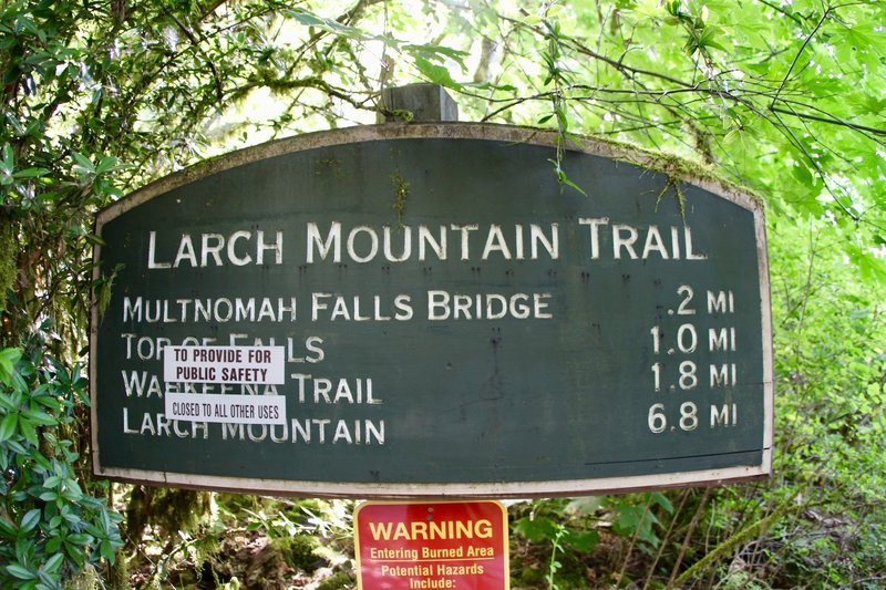 Larch Mountain Trail.. and closed trials