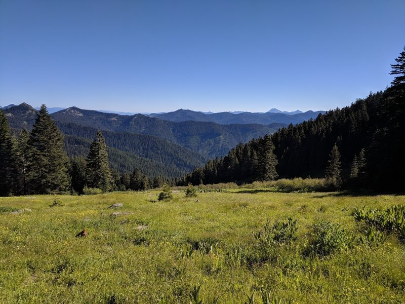 Looking SE towards Preston Peak in the Siskiyou Wilderness.