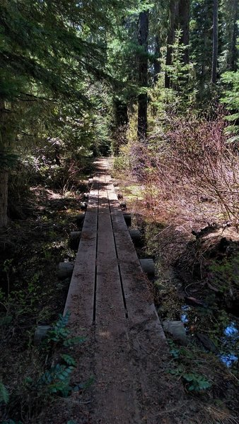 A low boardwalk helps keep things from getting boggy on the Fish Lake trail.