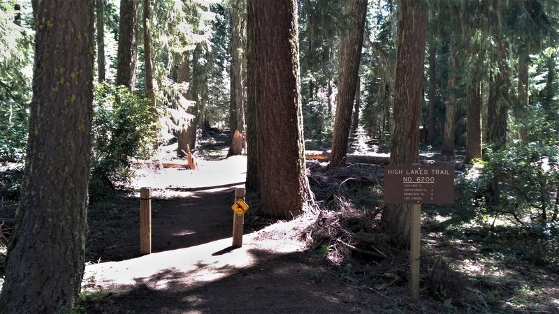 Beginning of High Lakes Trail at Fish Lake, OR.