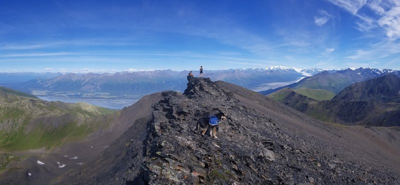 View of Knik Arm and Glacier from Yudikench Peak.