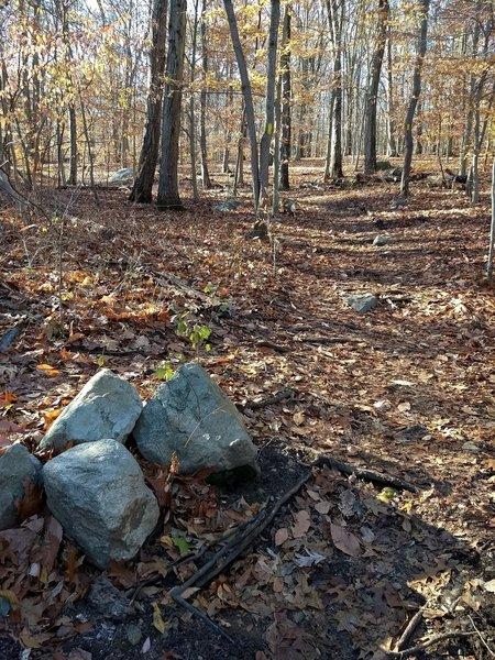 Where riverwalk meets indian rock