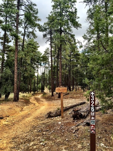 Trail 326/327 intersection