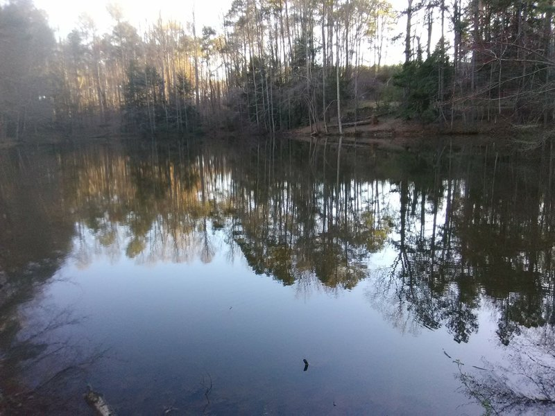 Larger pond