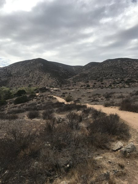 Really fun easy trail!