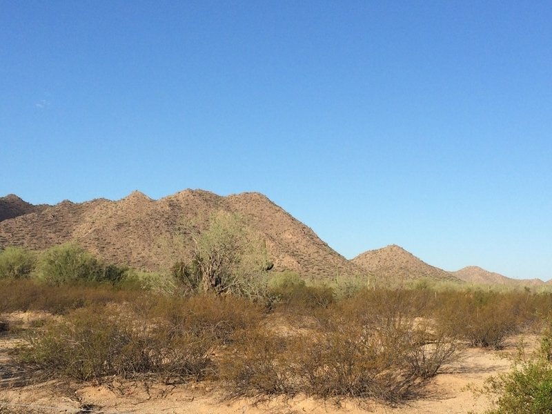 Just outside the main parking area at San Tan Trailhead looking west.