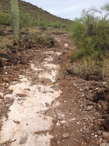 More summer rain damage to trail. will be fixed soon but be careful here, much steeper than it looks and very unforgiving.