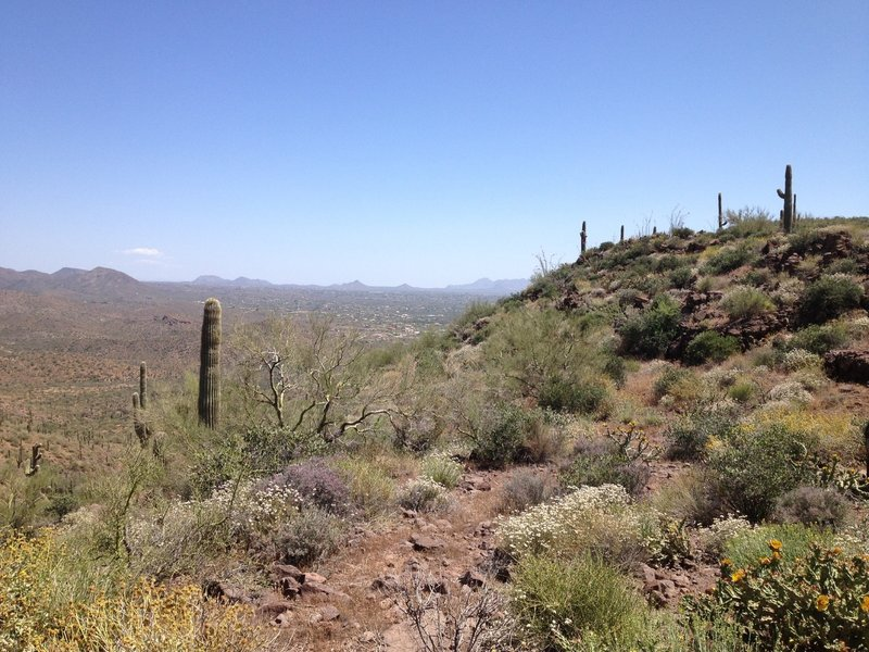 "The view from the ""Pass"" on Spur Cross Trail. The climb is worth the view."