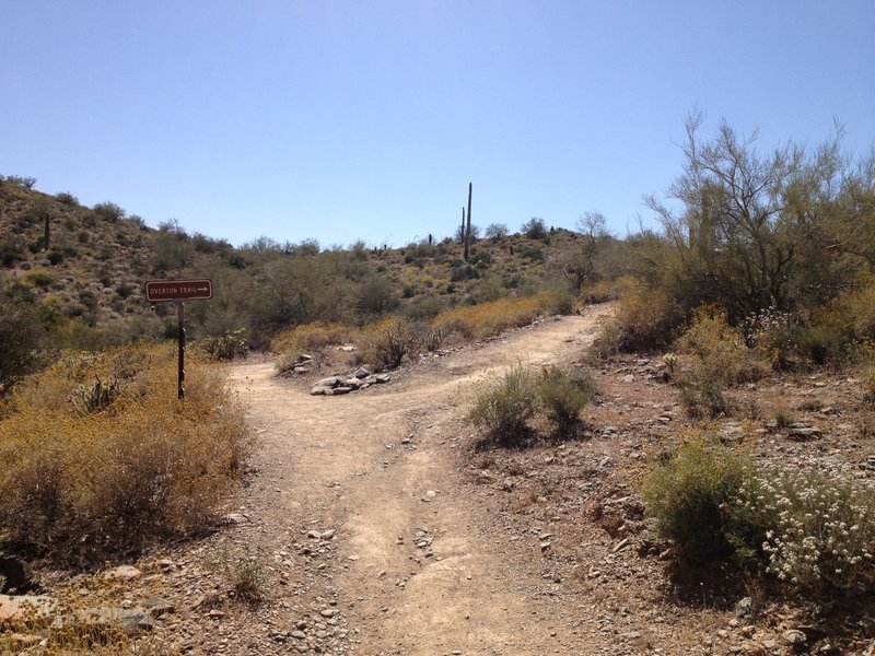 Junction of Go John Trail and Overton Trail; stay to the right and follow Overton Trail.