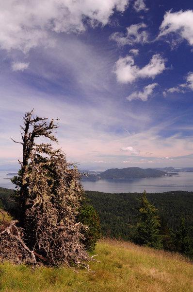 Little Summit Viewpoint.