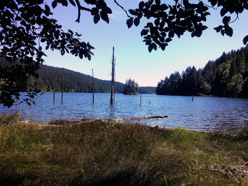 Sunlit Lake
