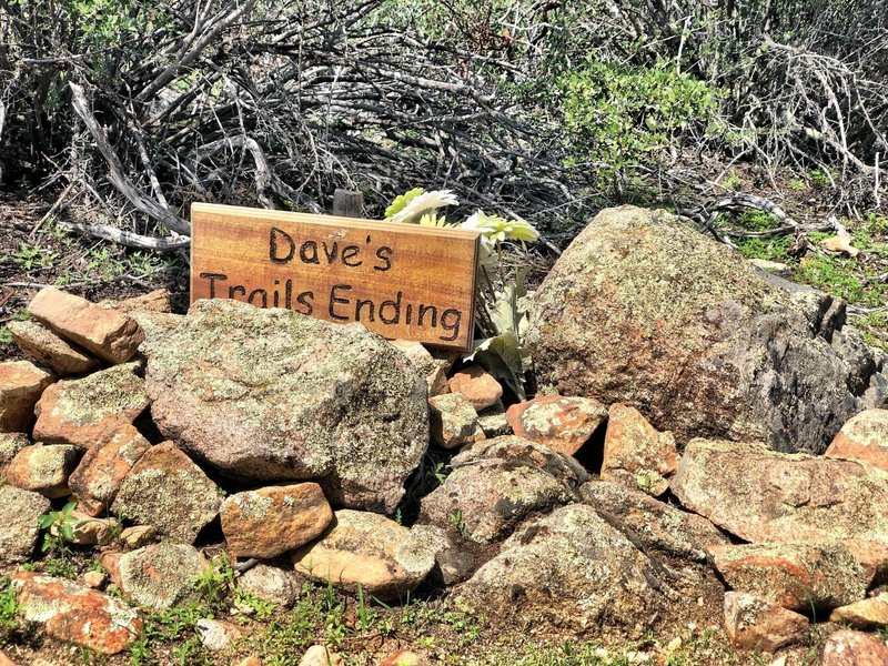 RIP Dave Mangan