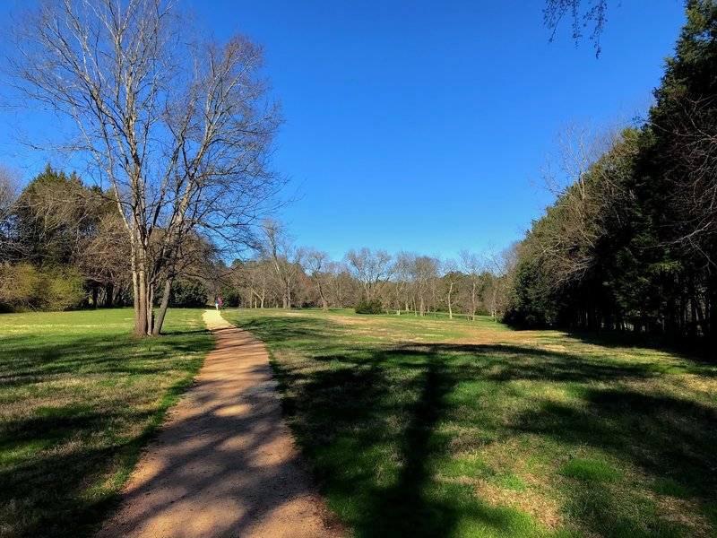 Much of the trail runs through large open spaces of the old plantation