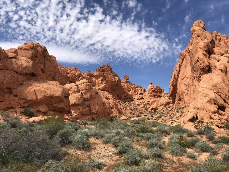 A view of the red rock formations along the Pinnacles Trail.