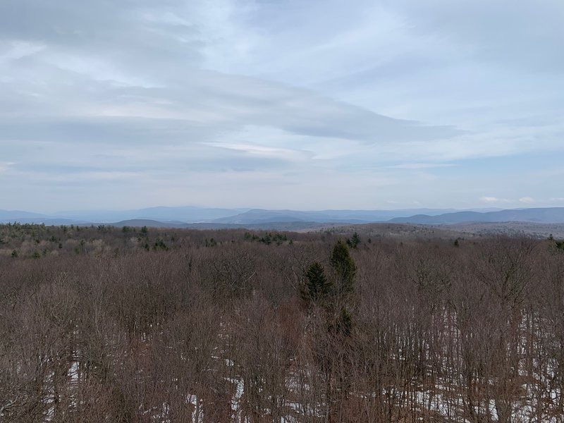 View from the Dickenson fire tower