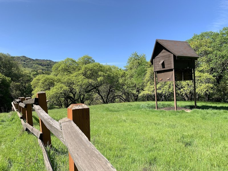 The Calero Bat Inn is a daytime retreat for local pest-eating mammals. A fence keeps you from getting close and disturbing their sleep.