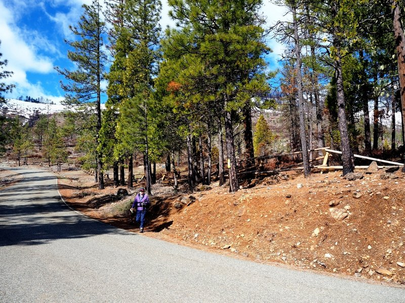 The trailhead on the Illlinois River Road
