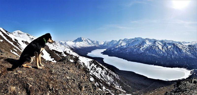 View of Eklutna Lake and Bold Peak from the Pepper Peak trail.