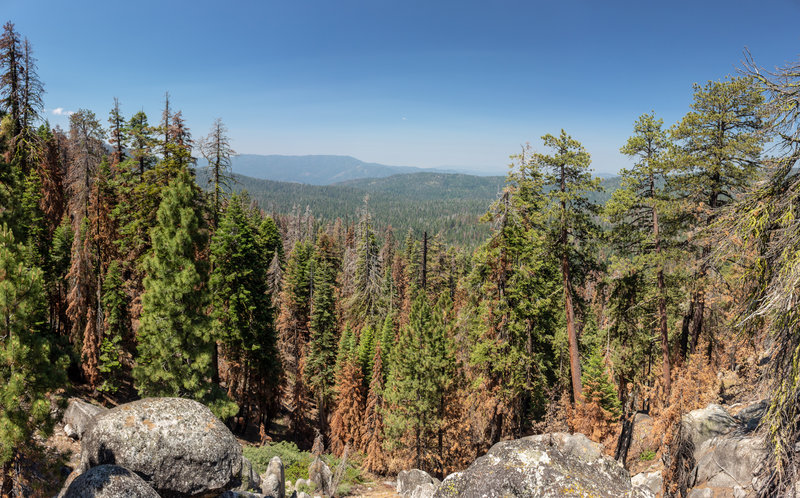 Easterly view from the highest point on the trail to Deer Camp