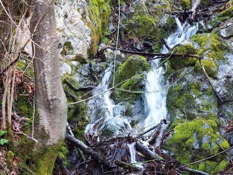 A small seasonal waterfall in Bear Gulch
