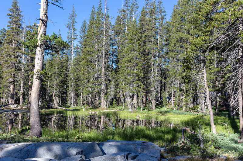 A small unnamed lake right next to Royal Arch Lake