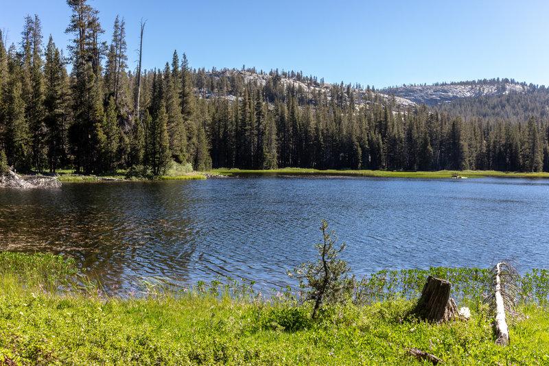 North side of Johnson Lake