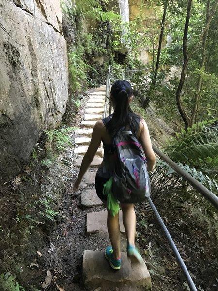 Descending towards Empress Falls