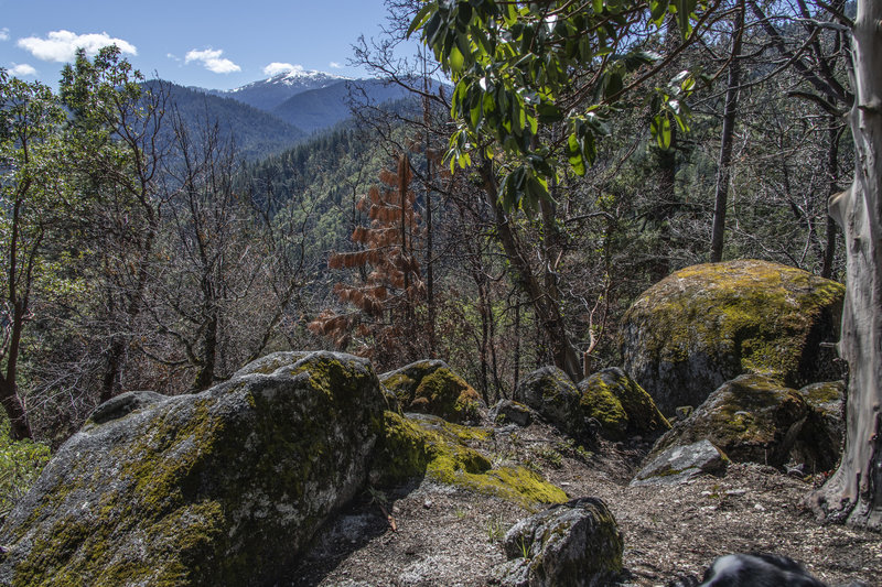 Granite boulders at intersection of Wonder Trail and Fell on Knee trail. View of snow covered Mt. Ashland in distance.