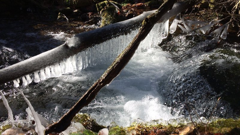 Icicles hanging from frozen log over creek.