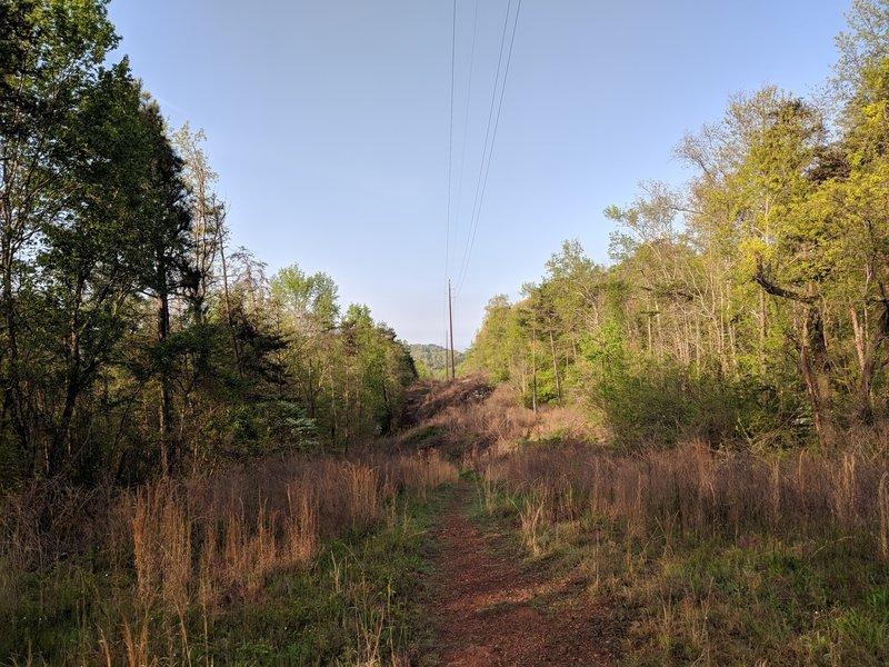 Moss Rock Power Line Trail