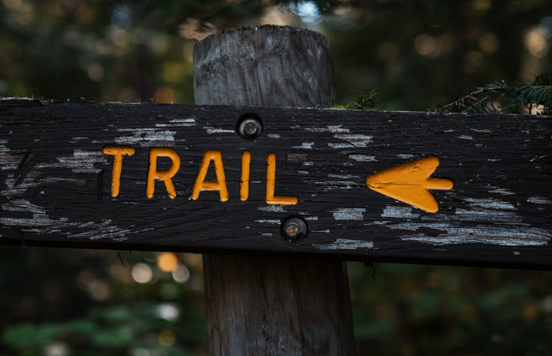 Hiking Trail Sign in the Forest