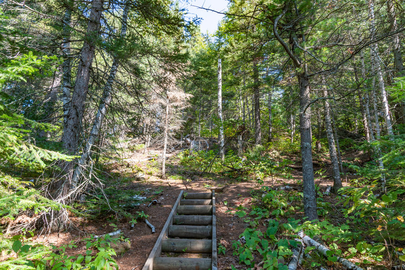Stairs on the Misquah Trail
