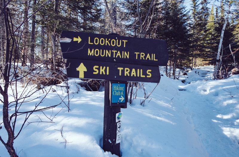 Winter Trails at Cascade River State Park, Minnesota