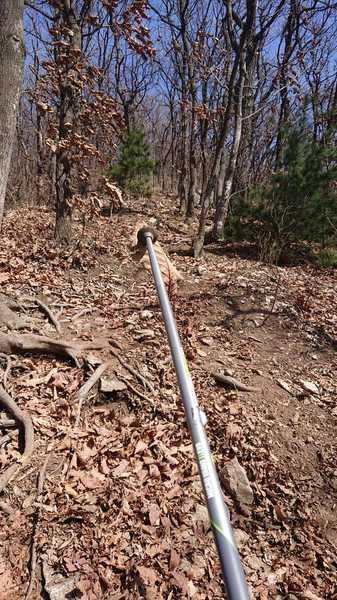 Steep climb return direction.