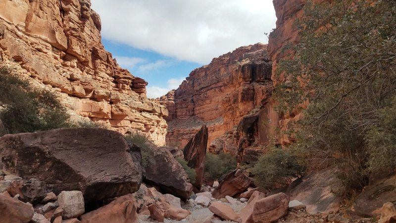 Through the canyon on the way to Supai Village.