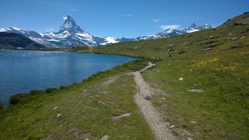 Stellisee at 2540m / 8333ft high, with Matterhorn view, surrounded by wildflowers.