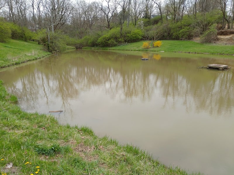 Small Pond with trail around the perimeter.