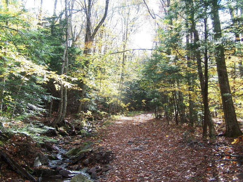 Sleepy Hollow Horse Trail