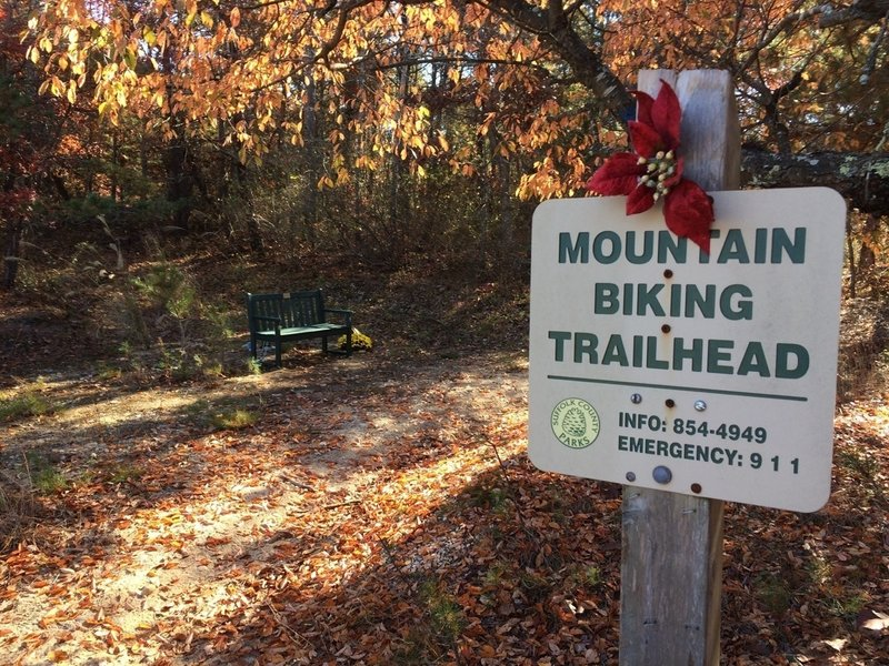 The trailhead is located at the Ross Hansen memorial park bench.