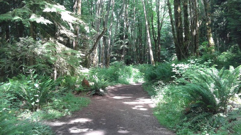 Cave Hole Trail