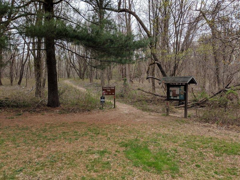 Peaceful Pond Trailhead