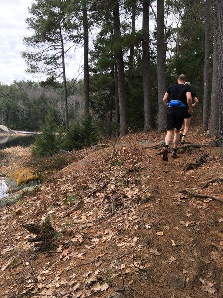 Trails along Round Pond.