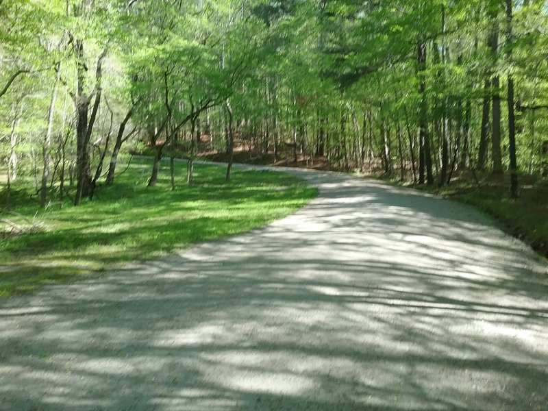 Intersection of the trail with Reedy Creek Lake
